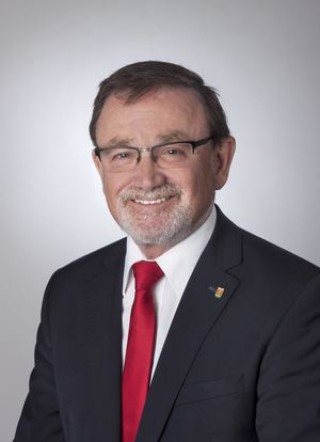 Ernesto Nebot-Pomar